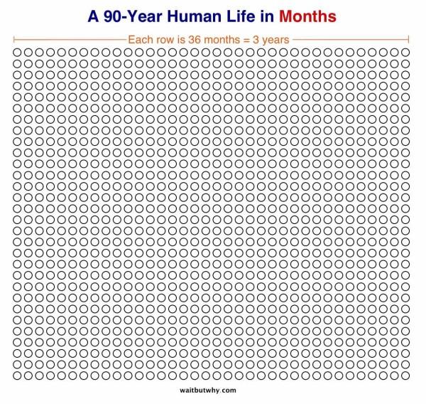months-600x568